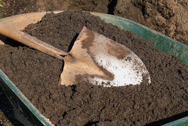 Rochester topsoil